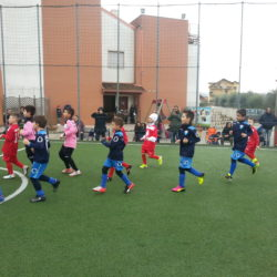 Concluso il Torneo di Carnevale, il Csi di Pozzuoli si prepara alla Junior Tim Cup