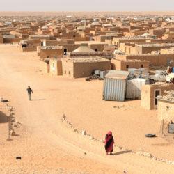 Raccolta farmaci a favore dei bambini saharawi, Pozzuoli in prima linea anche a ferragosto