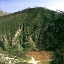 Riserve naturali e aree protette, incontro a Monte Nuovo tra studenti, insegnanti di scienze naturali ed esperti di ambiente