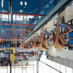Dhea Sport e Ever Green primeggiano nel 18° Campionato regionale di nuoto del Csi