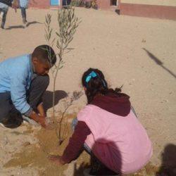 Saharawi, popolo senza terra. Convegno a Palazzo Migliaresi nel Rione Terra di Pozzuoli